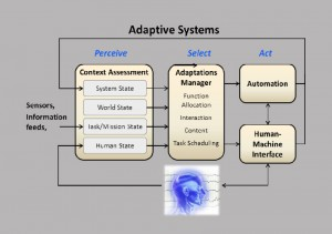 Adaptive Cognitive Systems