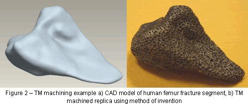 CAD model of human femur segment